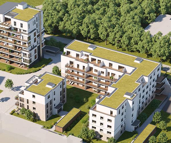 hugo49 | Wohnungen in Bayreuth | Energieeffizienz | Extensive Dachbegruenung